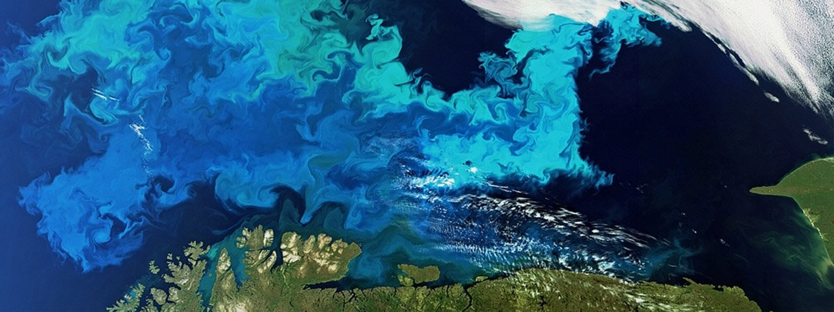 Barents Sea from space